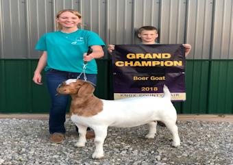 Winners - Lowes Pellets & Grain, Inc